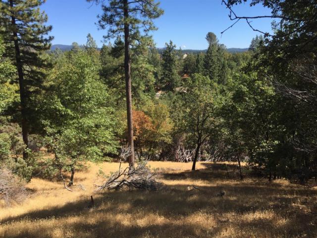 52 Escondito Circle, Camino, CA 95709 (MLS #18064677) :: Keller Williams - Rachel Adams Group