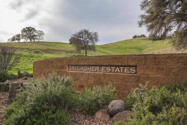 6521 Gallagher Road, Pilot Hill, CA 95664 (MLS #18064887) :: The MacDonald Group at PMZ Real Estate
