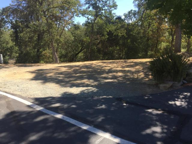 115 Thomson Lane, Copperopolis, CA 95228 (MLS #18065573) :: REMAX Executive