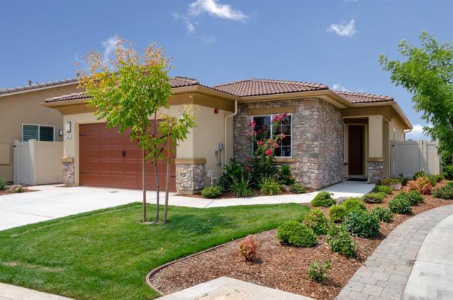390 Via Ziroli, Oakdale, CA 95361 (MLS #18066034) :: The Del Real Group