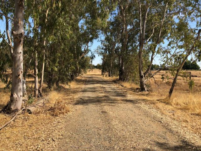 10333 Badger Creek Lane, Wilton, CA 95693 (#18066059) :: Windermere Hulsey & Associates