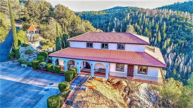 2306 Woodhouse Mine Rd, West Point, CA 95255 (MLS #18066219) :: REMAX Executive