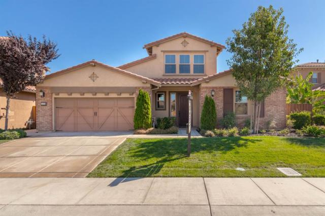 1136 Camogli Court, Manteca, CA 95337 (MLS #18066236) :: Heidi Phong Real Estate Team