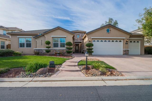 33547 Wildwing Drive, Woodland, CA 95695 (MLS #18066304) :: Heidi Phong Real Estate Team