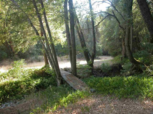 0-0 E Quartz Mountain Road, Sutter Creek, CA 95685 (MLS #18066308) :: NewVision Realty Group