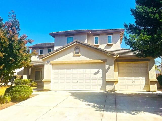 3940 Angelina Lane, Stockton, CA 95212 (MLS #18066309) :: REMAX Executive