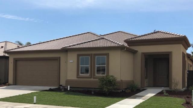 19539 W Verona Way, Hilmar, CA 95324 (MLS #18066319) :: Heidi Phong Real Estate Team