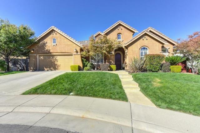 308 Gannet Court, Lincoln, CA 95648 (MLS #18066359) :: The Del Real Group