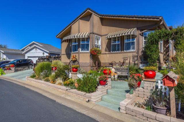 179 Mesa De Oro Circle, Sutter Creek, CA 95685 (MLS #18066390) :: The Merlino Home Team
