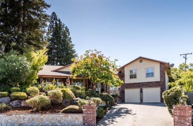 8202 Niessen Way, Fair Oaks, CA 95628 (MLS #18066572) :: REMAX Executive