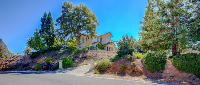 618 Silver Road, Valley Springs, CA 95252 (MLS #18066715) :: Heidi Phong Real Estate Team