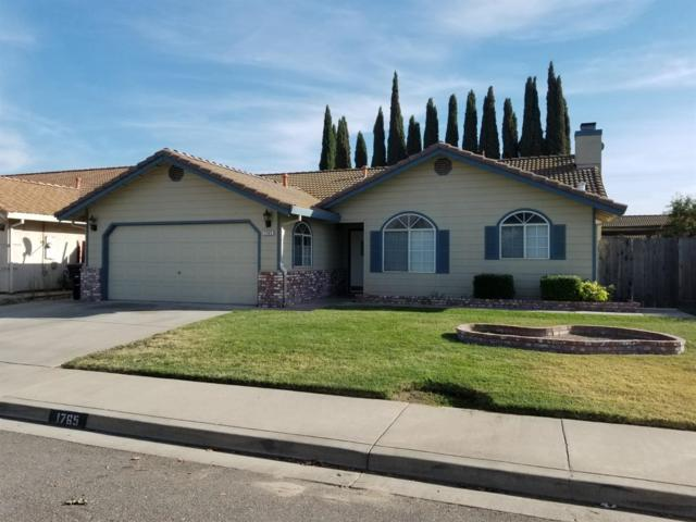 1765 Snowy River, Oakdale, CA 95361 (MLS #18066740) :: NewVision Realty Group