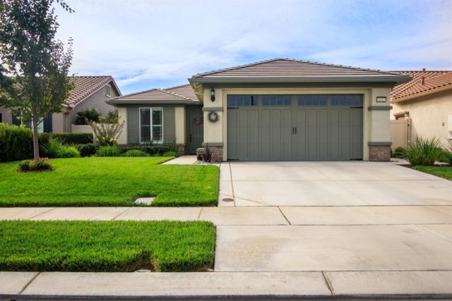1442 Carriage House Street, Manteca, CA 95336 (MLS #18067259) :: REMAX Executive
