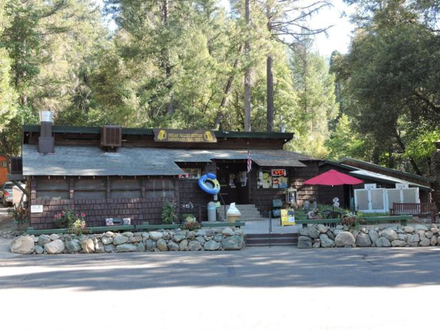 4601 Hwy 49, Camptonville, CA 95922 (MLS #18067270) :: Dominic Brandon and Team