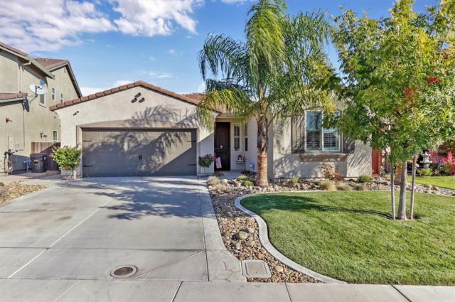 1045 Alba Street, Manteca, CA 95337 (MLS #18067484) :: NewVision Realty Group
