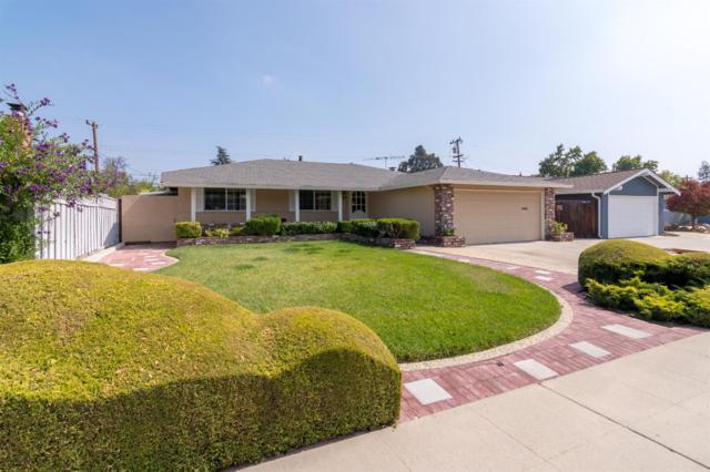 860 Loyalton Drive, Campbell, CA 95008 (MLS #18067553) :: Dominic Brandon and Team