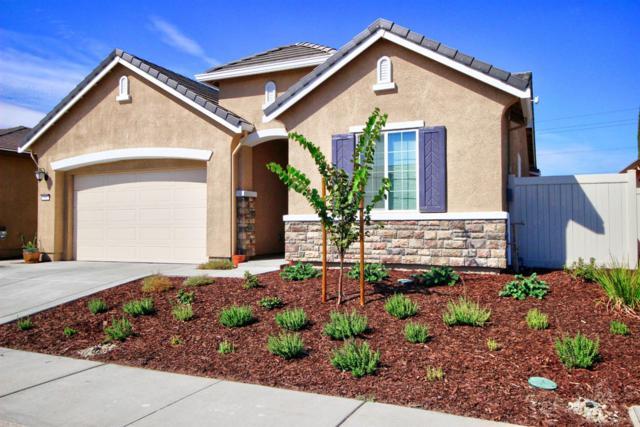 181 Suez Canal Lane, Sacramento, CA 95834 (MLS #18067580) :: Heidi Phong Real Estate Team