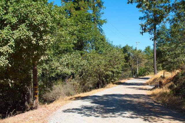 0 Rex Court, Placerville, CA 95667 (MLS #18067581) :: NewVision Realty Group