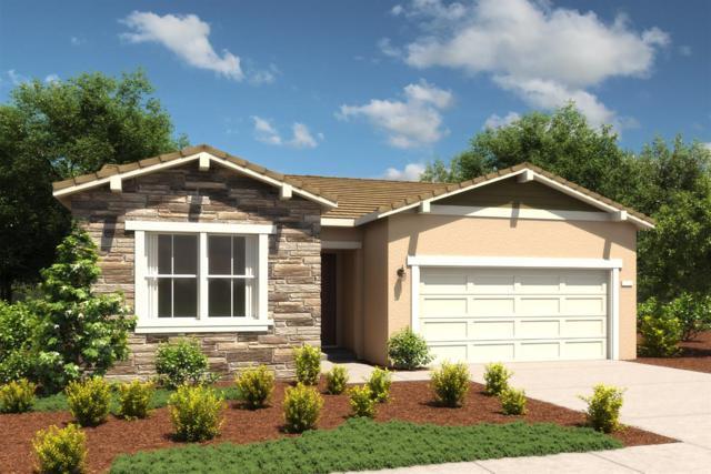 8841 Upbeat Way, Elk Grove, CA 95757 (MLS #18067605) :: Heidi Phong Real Estate Team