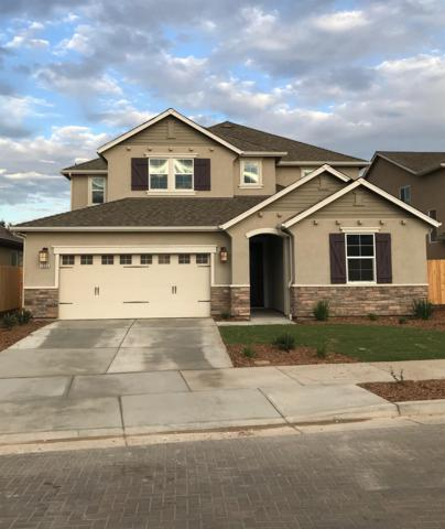 1664 Audrey Lane, Ripon, CA 95366 (MLS #18067667) :: The Del Real Group