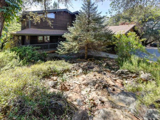 3048 Stagecoach Road, Placerville, CA 95667 (MLS #18067691) :: Heidi Phong Real Estate Team