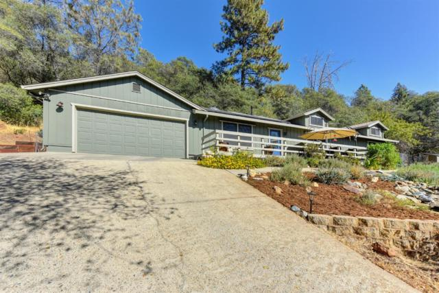 4201 Toyon Court, Shingle Springs, CA 95682 (MLS #18067801) :: NewVision Realty Group