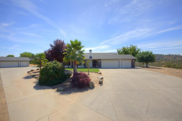1531 Papoose Drive, Copperopolis, CA 95228 (MLS #18068010) :: The Merlino Home Team