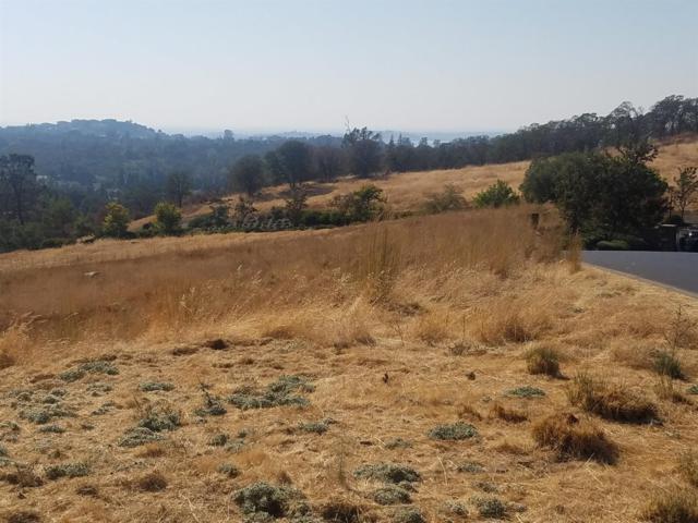 7472 Sangiovese Drive, El Dorado Hills, CA 95762 (MLS #18068167) :: Heidi Phong Real Estate Team