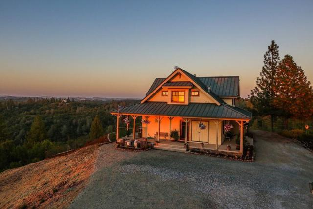 14001 Echo Drive, Sutter Creek, CA 95685 (MLS #18068257) :: The Merlino Home Team