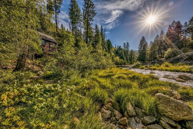 10272 Bull Creek, Pollock Pines, CA 95726 (MLS #18068855) :: The Del Real Group