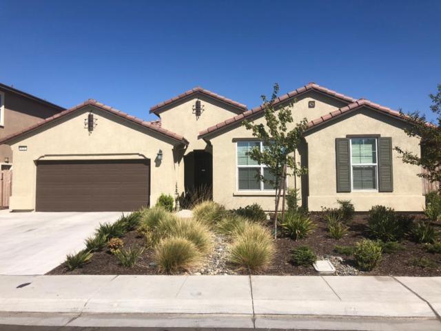 971 Lavender Street, Manteca, CA 95337 (MLS #18069070) :: Heidi Phong Real Estate Team