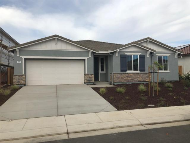 529 Rotelli Street, Manteca, CA 95337 (MLS #18069212) :: NewVision Realty Group