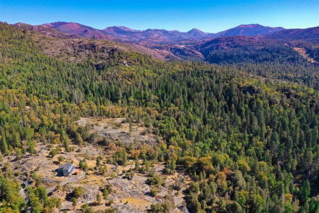 36386 State Highway 20, Nevada City, CA 95959 (MLS #18069343) :: Heidi Phong Real Estate Team
