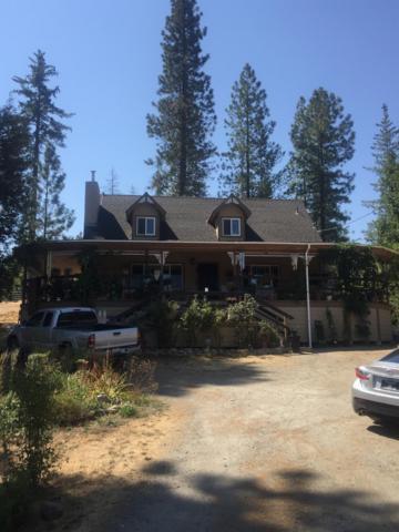 11035 Dexter Road, Coulterville, CA 95311 (MLS #18069373) :: REMAX Executive