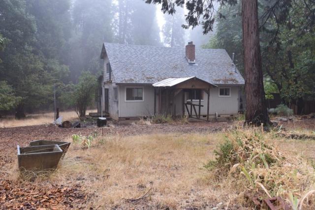 26072 Buckhorn Lane, Pioneer, CA 95666 (MLS #18069513) :: The Del Real Group