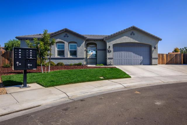 1295 Grafton Court, Manteca, CA 95337 (MLS #18069551) :: Heidi Phong Real Estate Team