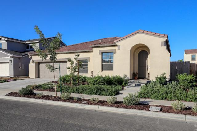 109 Lemon Blossom Lane, Patterson, CA 95363 (MLS #18069652) :: The Del Real Group