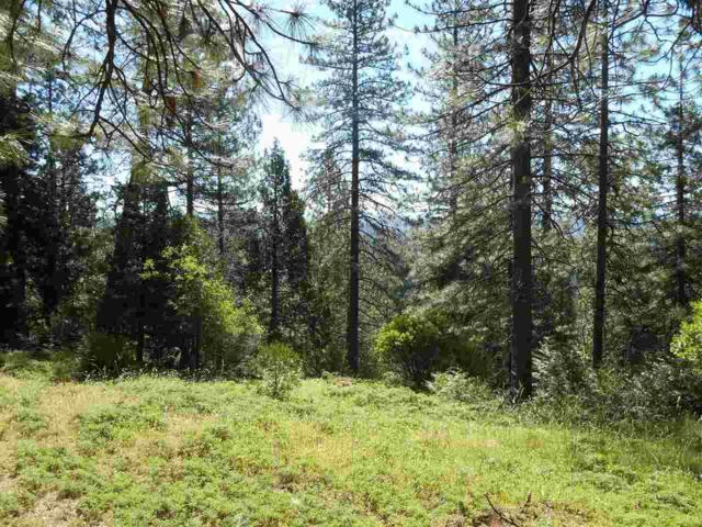 18492 Vista Lane, Pioneer, CA 95666 (MLS #18069657) :: REMAX Executive