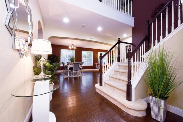 11736 Arista Way, Rancho Cordova, CA 95742 (MLS #18069954) :: REMAX Executive