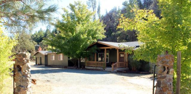 17460 Dog Bar Road, Grass Valley, CA 95949 (MLS #18070018) :: The Merlino Home Team
