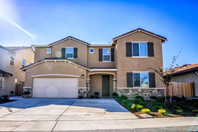 1162 Lavender Street, Manteca, CA 95337 (MLS #18070019) :: The Del Real Group