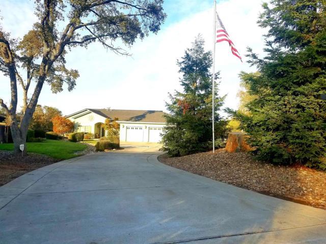 3498 Priscilla Ct, Valley Springs, CA 95252 (MLS #18070030) :: The Merlino Home Team