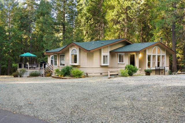 14516 Scotts Flat Pines Road, Nevada City, CA 95959 (MLS #18070035) :: NewVision Realty Group