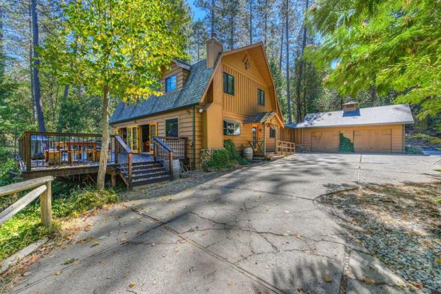 13066 Aqueduct Grove Road, Pine Grove, CA 95665 (MLS #18070071) :: Dominic Brandon and Team