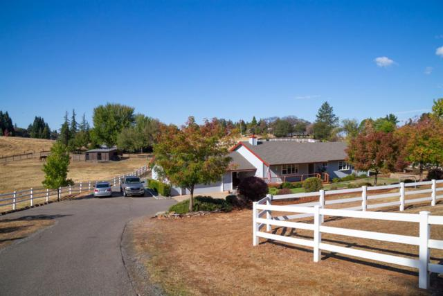 2440 Otter Trail, Cool, CA 95614 (MLS #18070197) :: The Merlino Home Team