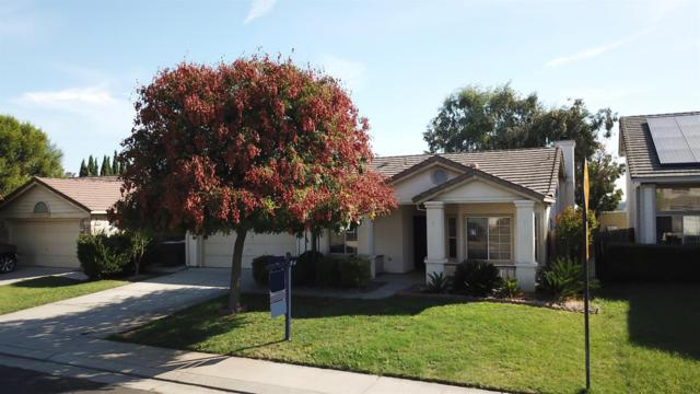 14513 Pinewood Drive, Lathrop, CA 95330 (MLS #18070206) :: Heidi Phong Real Estate Team