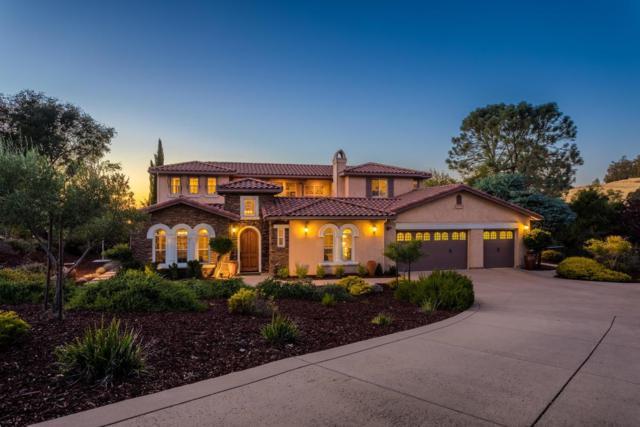 7006 Steeple Chase Court, Shingle Springs, CA 95682 (MLS #18070249) :: Heidi Phong Real Estate Team
