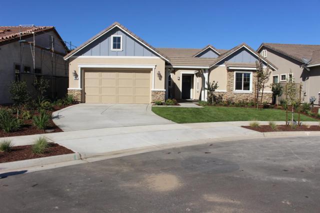 2087 S Regal Court, Turlock, CA 95382 (MLS #18070304) :: Heidi Phong Real Estate Team