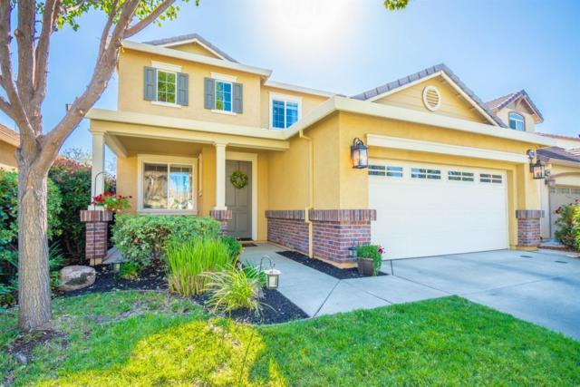 1288 Laysan Teal Drive, Roseville, CA 95747 (MLS #18070346) :: REMAX Executive