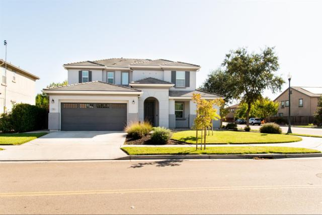 17686 Wheat Field Street, Lathrop, CA 95330 (MLS #18070416) :: Heidi Phong Real Estate Team